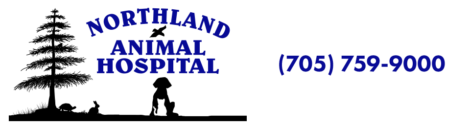 Logo for Northland Animal Hospital Sault Ste Marie, Ontario